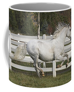 Coffee Mug featuring the photograph Glorious Gunther D2972 by Wes and Dotty Weber