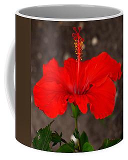 Glowing Red Hibiscus Coffee Mug