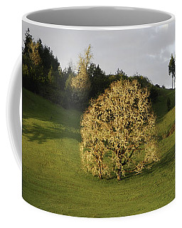 Glowing Tree Moss Coffee Mug