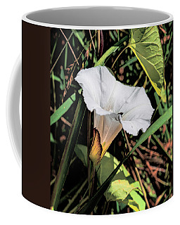 Coffee Mug featuring the photograph Glowing White Flower by Leif Sohlman
