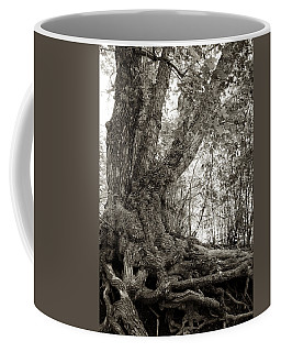 Coffee Mug featuring the photograph Gnarled Tree by Mary Lee Dereske