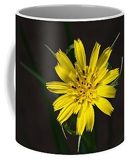 Coffee Mug featuring the photograph Goats Beard Flower by Paul Gulliver