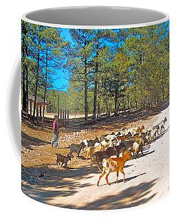 Goats Cross The Road With Tarahumara Boy As Goatherd-chihuahua Coffee Mug