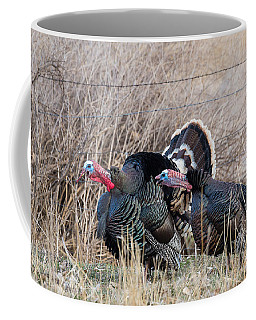Coffee Mug featuring the photograph Gobbling Turkeys by Michael Chatt