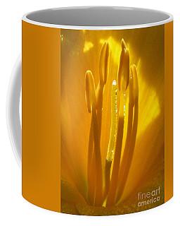 God's Light Shining Through Coffee Mug