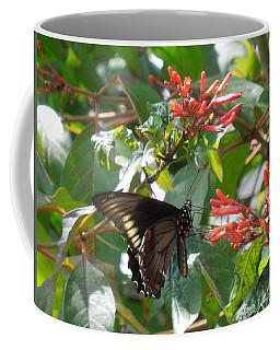Coffee Mug featuring the photograph Gold Rim Swallowtail by Ron Davidson