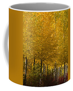 Coffee Mug featuring the photograph Golden Aspens by Don Schwartz