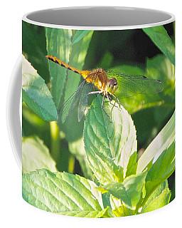 Golden Dragonfly On Mint Coffee Mug