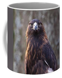 Golden Eagle 4 Coffee Mug