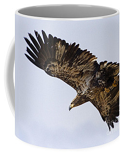Coffee Mug featuring the photograph Golden Eagle by J L Woody Wooden