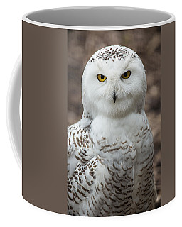 Golden Eye Coffee Mug by Dale Kincaid