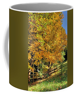 Coffee Mug featuring the photograph Golden Fenceline by Gordon Elwell