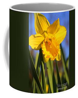 Golden Glory Daffodil Coffee Mug