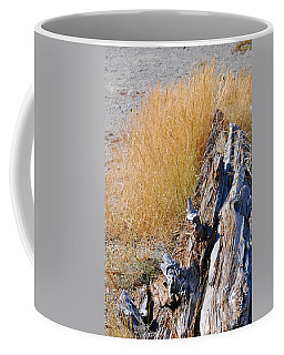 Coffee Mug featuring the photograph Golden Grass by Connie Fox
