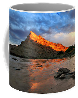 Coffee Mug featuring the photograph Golden Highlights by Ronda Kimbrow