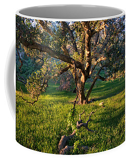 Golden Oak Coffee Mug