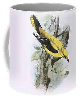 Golden Oriole Coffee Mug