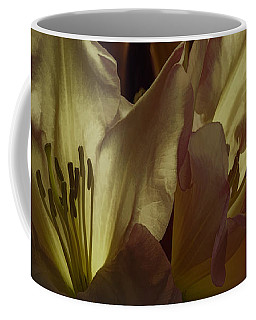 Golden Reserve Coffee Mug by Jean OKeeffe Macro Abundance Art
