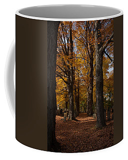 Coffee Mug featuring the photograph Golden Rows Of Maples Guide The Way by Jeff Folger