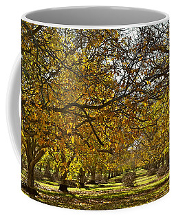 Golden Walnut Orchard Coffee Mug