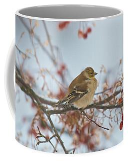 Goldfinch Brrrr Coffee Mug