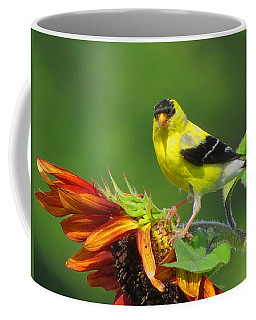 Coffee Mug featuring the photograph Goldfinch Pose by Dianne Cowen