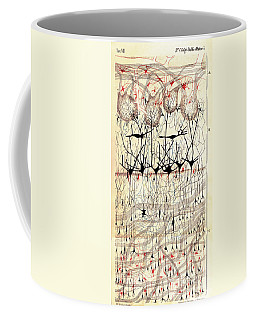 Golgi Olfactory Bulb Of Dog Coffee Mug