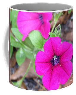 Coffee Mug featuring the photograph Good Morning by Andrea Anderegg