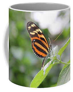 Good Morning Butterfly Coffee Mug