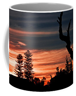 Coffee Mug featuring the photograph Good Night Trees by Miroslava Jurcik