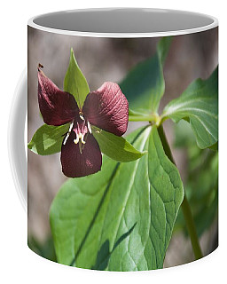 Good Things Come In Threes Coffee Mug