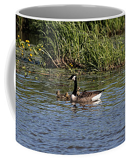 Coffee Mug featuring the photograph Goose Family In The Water by Leif Sohlman