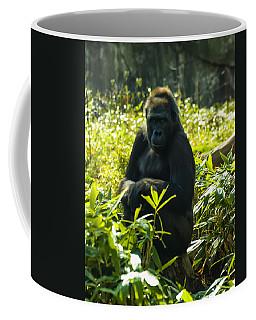 Gorilla Sitting On A Stump Coffee Mug
