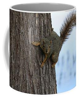 Lookin' For Nuts Coffee Mug