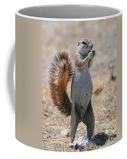 Got Nuts?  Coffee Mug