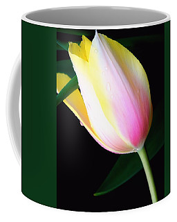Graceful Beauty Coffee Mug