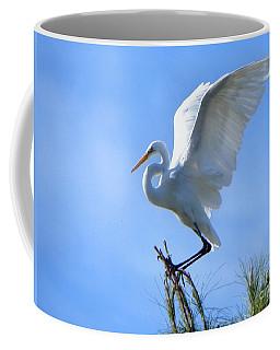 Coffee Mug featuring the photograph Graceful Landing by Deb Halloran