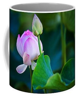 Graceful Lotus. Pamplemousses Botanical Garden. Mauritius Coffee Mug