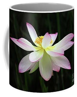 Graceful Lotus Coffee Mug