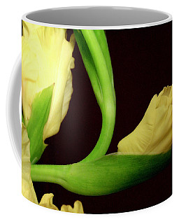 Coffee Mug featuring the photograph Gracefully Dawning by Deborah  Crew-Johnson