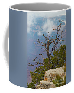 Coffee Mug featuring the photograph Grand Canyon Tree by Rod Wiens