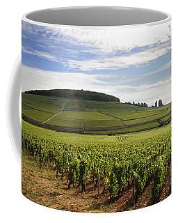 Grand Cru And Premier Cru Vineyards Of Aloxe Corton. Cote De Beaune. Burgundy. Coffee Mug