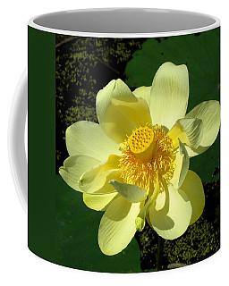 Grand Opening Coffee Mug