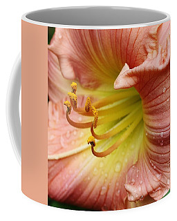 Coffee Mug featuring the photograph Grandma's Lily by Bruce Bley