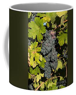 Grape Harvest Coffee Mug by Suzanne Luft