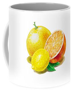 Grapefruit Lemon Orange Coffee Mug by Irina Sztukowski