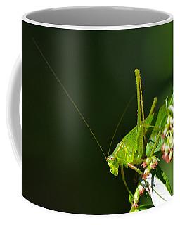 Grasshopper #1 Coffee Mug