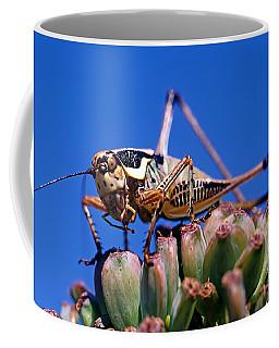 Coffee Mug featuring the photograph Grasshopper by George Atsametakis