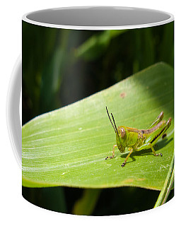 Grasshopper On Corn Leaf   Coffee Mug