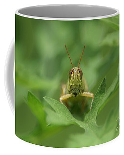 Coffee Mug featuring the photograph Grasshopper Portrait by Olga Hamilton